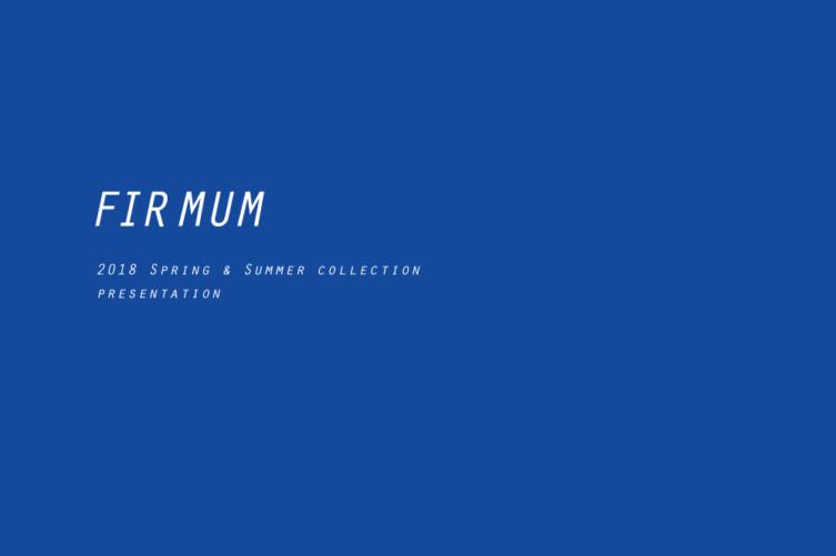 firmum18sslogoblue-999-black